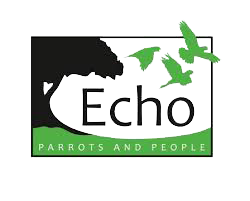 ECHO-PARROTS-AND-PEOPLE-BONAIRE.png