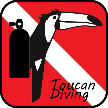 Toucan-Diving.png