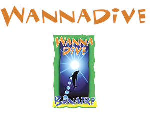 WANNA-DIVE.png